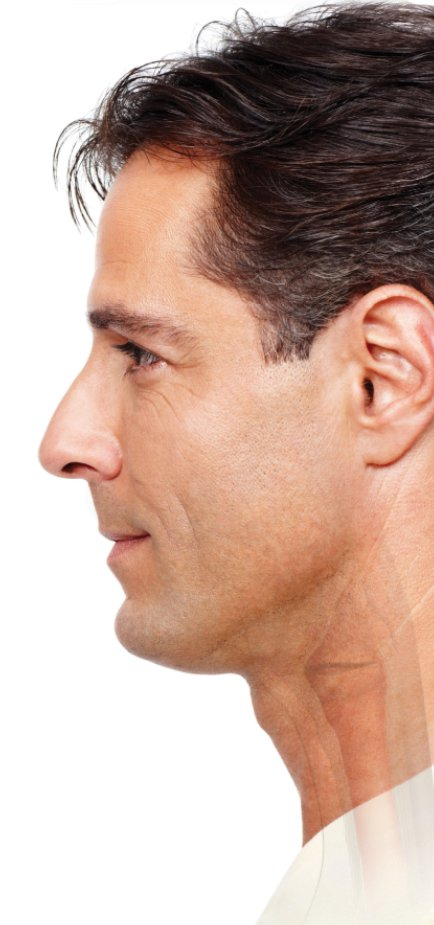 Side view of larynx